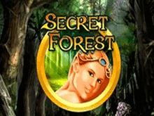 Скачать автоматы Secret Forest без смс