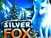 Игровой автомат Silver Fox с бонусами