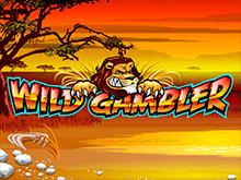 Азартный автомат на сайте Вулкан 24 Wild Gambler