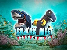 Игровой аппарат Shark Meet на сайте клуба онлайн